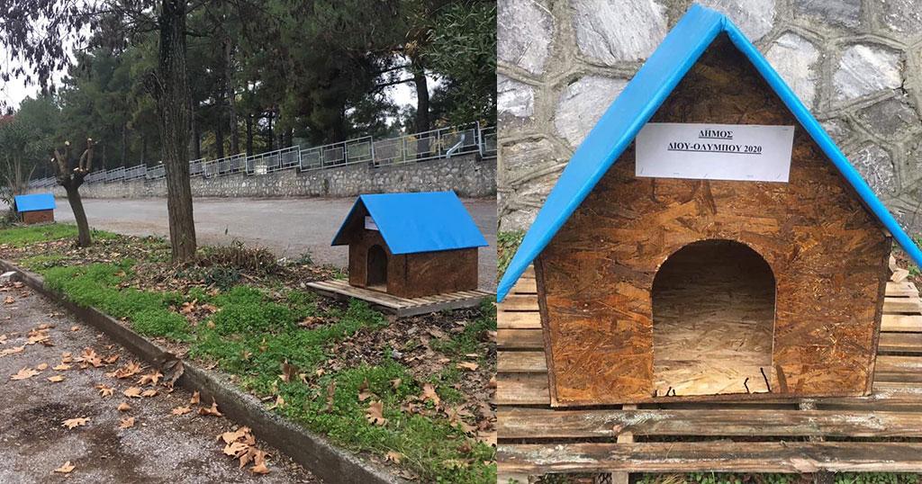 Δήμος Δίου-Ολύμπου: Έφτιαξε και τοποθέτησε ξύλινα σπιτάκια για τα αδέσποτα